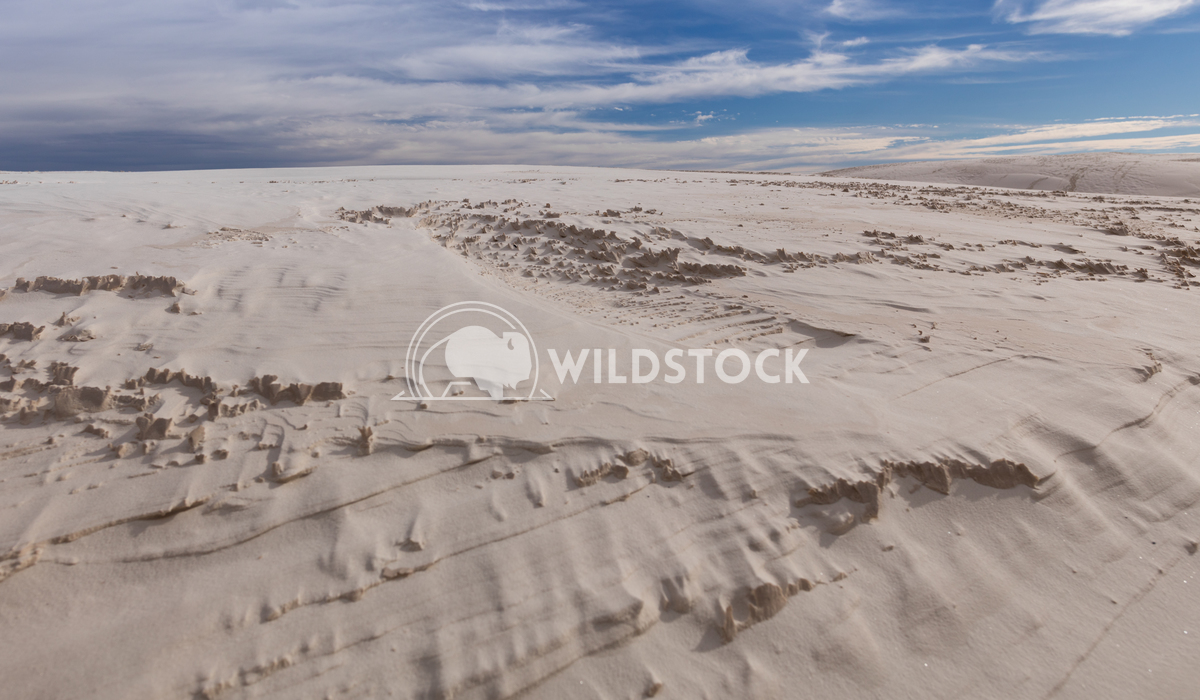 White Sands Lara Eichenwald White Sands National Monument in New Mexico
