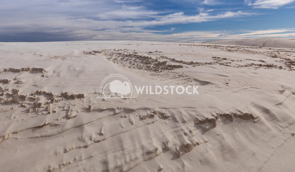 White Sands Lara Eichenwald White Sands National Monument in New Mexico