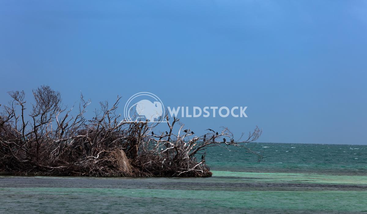Florida Keys-2 Lara Eichenwald