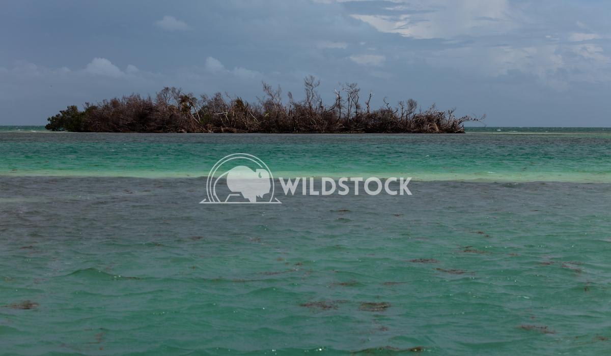 Florida Keys-1 Lara Eichenwald