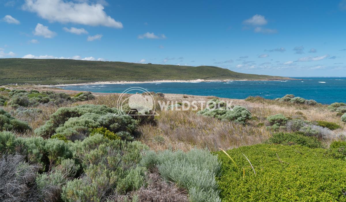 Leeuwin-Naturaliste National Park, Western Australia 2 Alexander Ludwig Beautiful coastal landscape of Cape Leeuwin, Lee