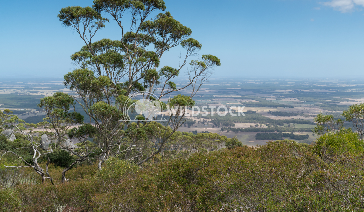 Porongurup National Park, Western Australia 11 Alexander Ludwig Panoramic view from the Castle Rock over the landscape o