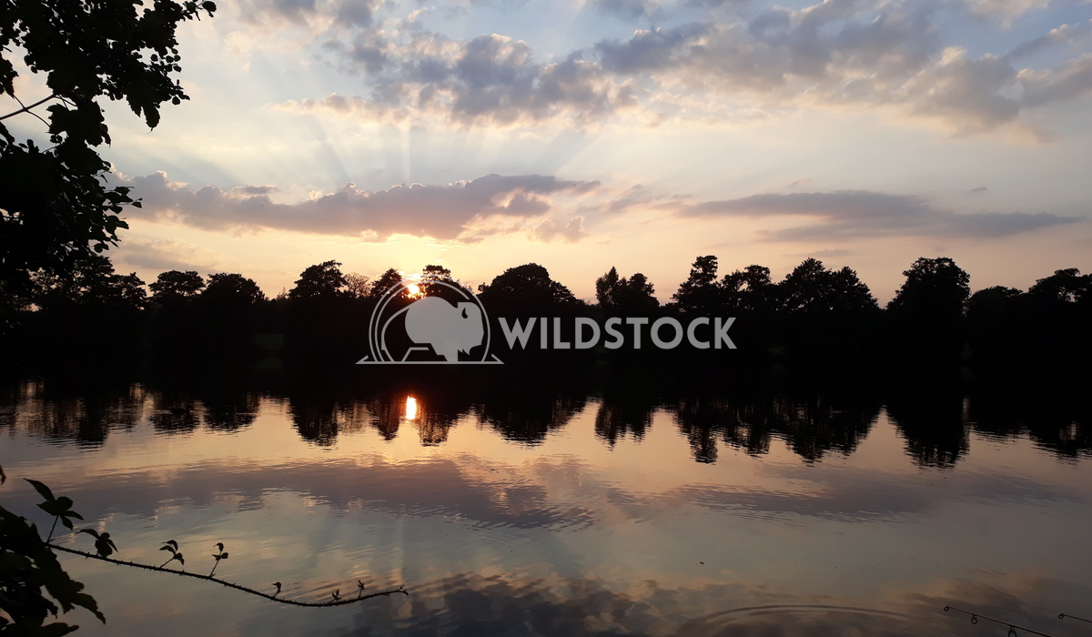 Lake sunset Simon Panter