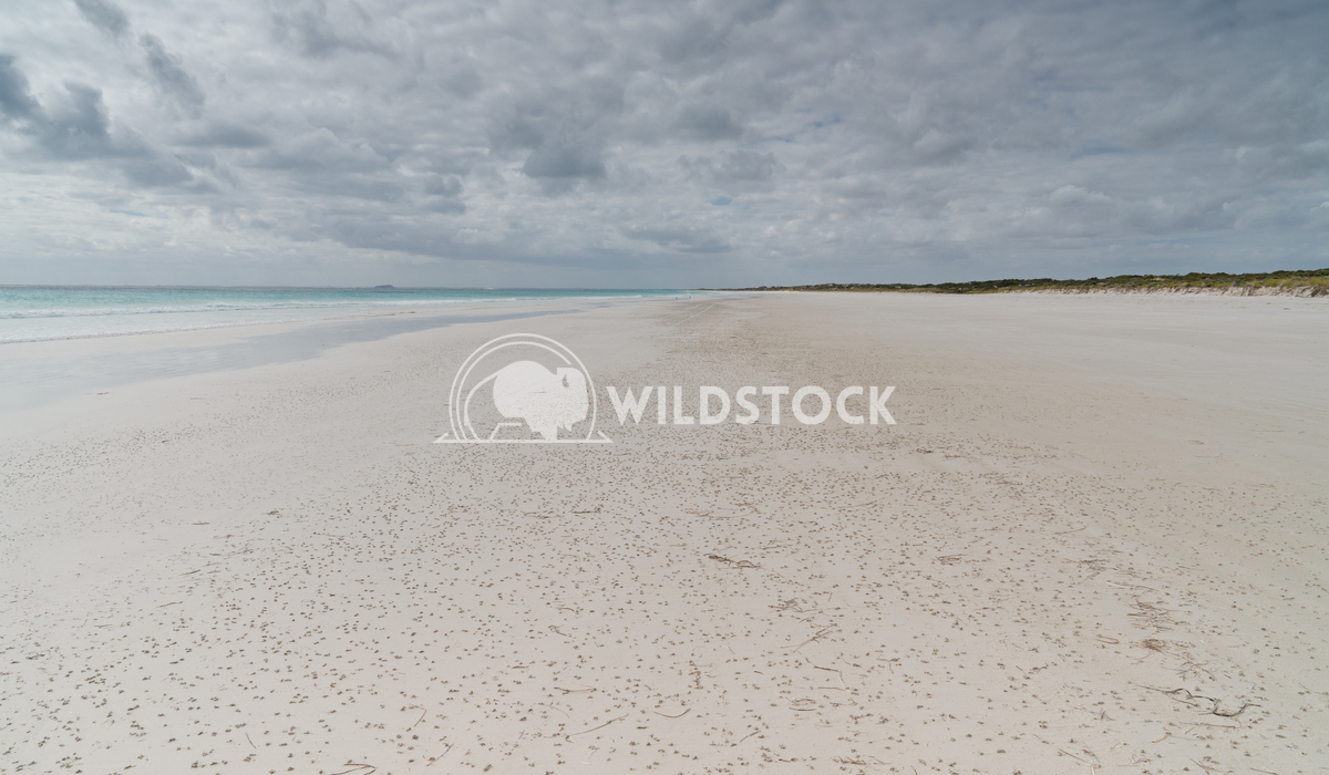 Le Grand Beach, Cape Le Grand National Park, Western Australia 2 Alexander Ludwig White Le Grand Beach on an overcast da