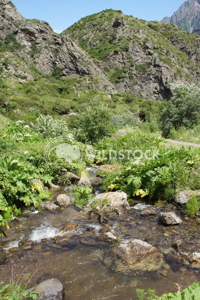 Gveleti High Valley, Caucasus Mountains, Georgia 2 Alexander Ludwig Gveleti High Valley, beautiful landscape along the G