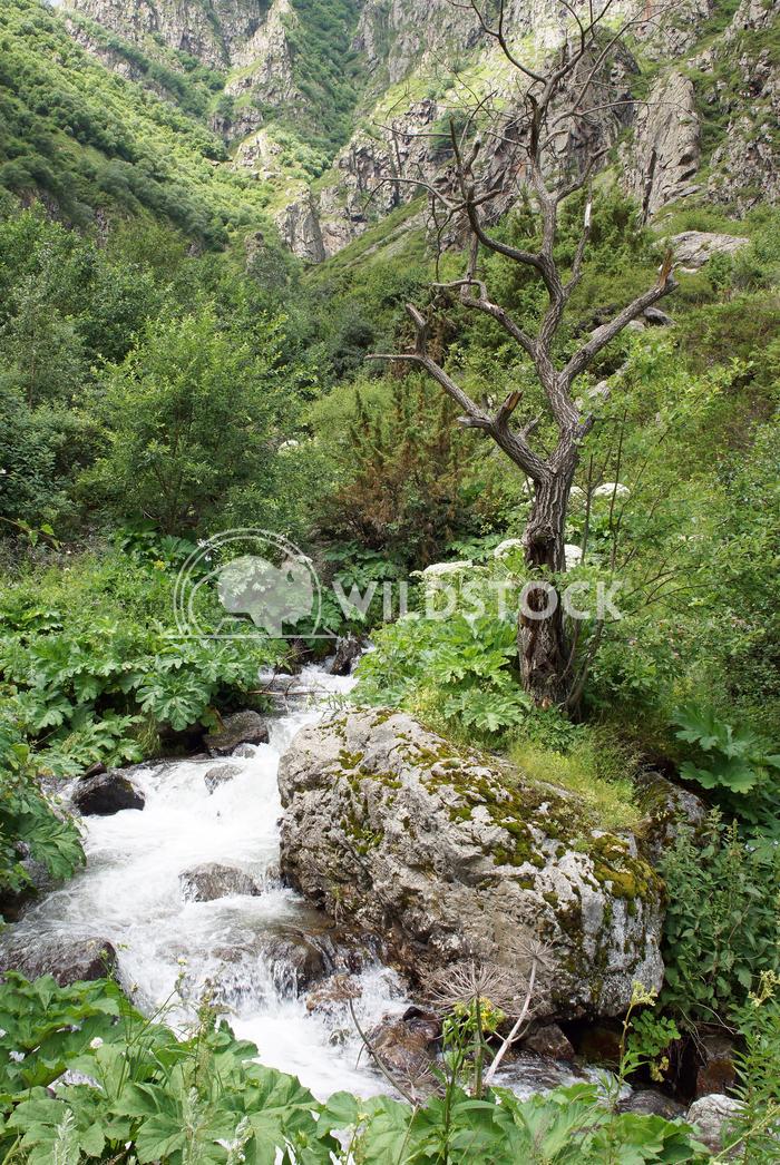 Gveleti High Valley, Caucasus Mountains, Georgia 3 Alexander Ludwig Gveleti High Valley, beautiful landscape along the G