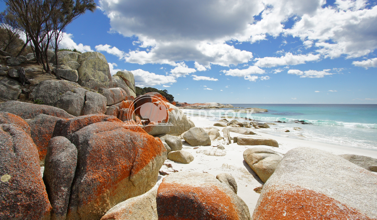 Bay of Fires, Tasmania, Australia 6 Alexander Ludwig Bay of Fires, one of the most beautiful beaches of the world, Tasma