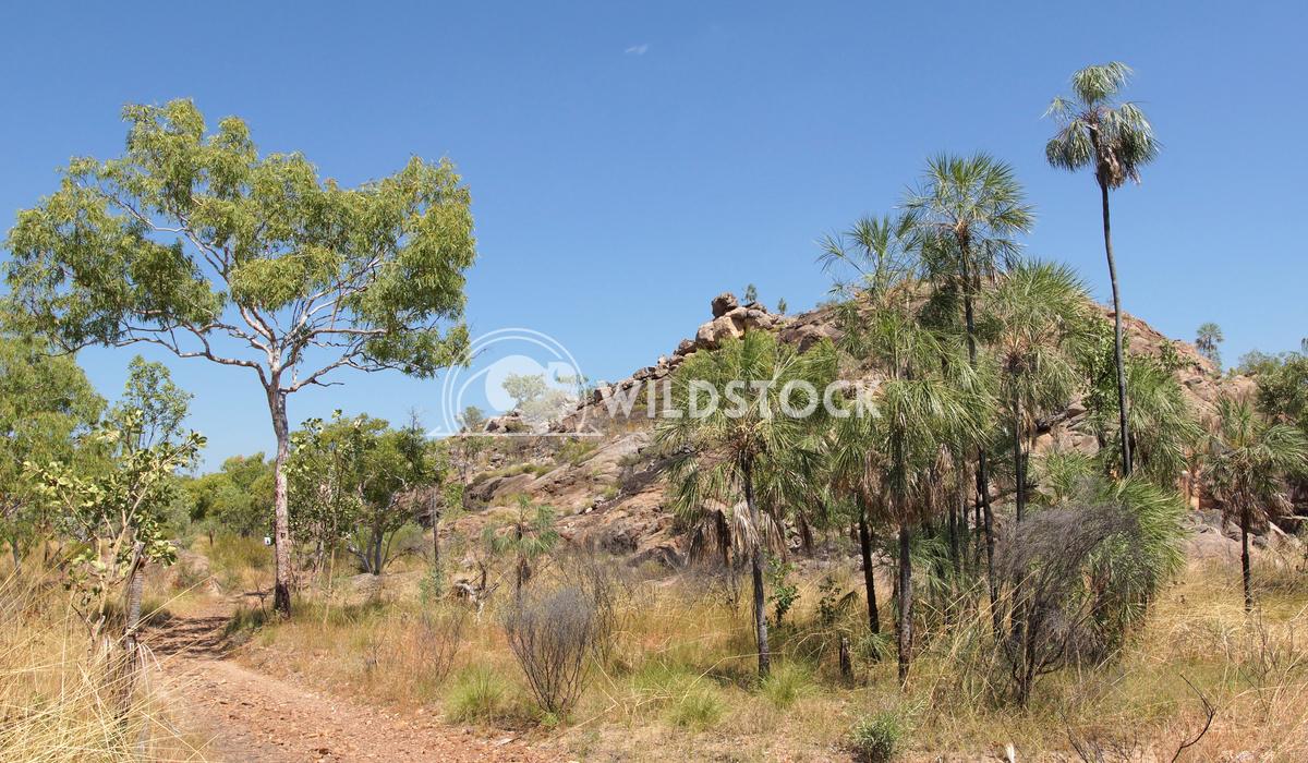 Nitmiluk National Park, Australia 10 Alexander Ludwig Landscape of the Nitmiluk National Park, Australia