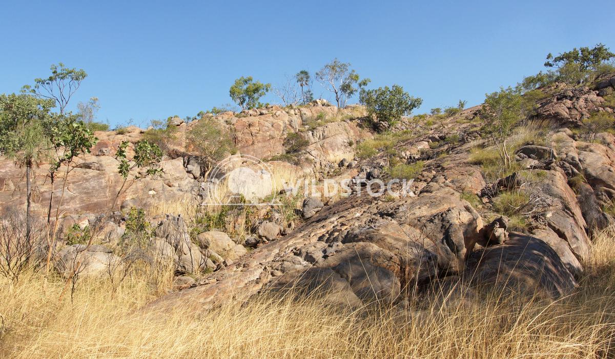 Nitmiluk National Park, Australia 11 Alexander Ludwig Landscape of the Nitmiluk National Park, Australia