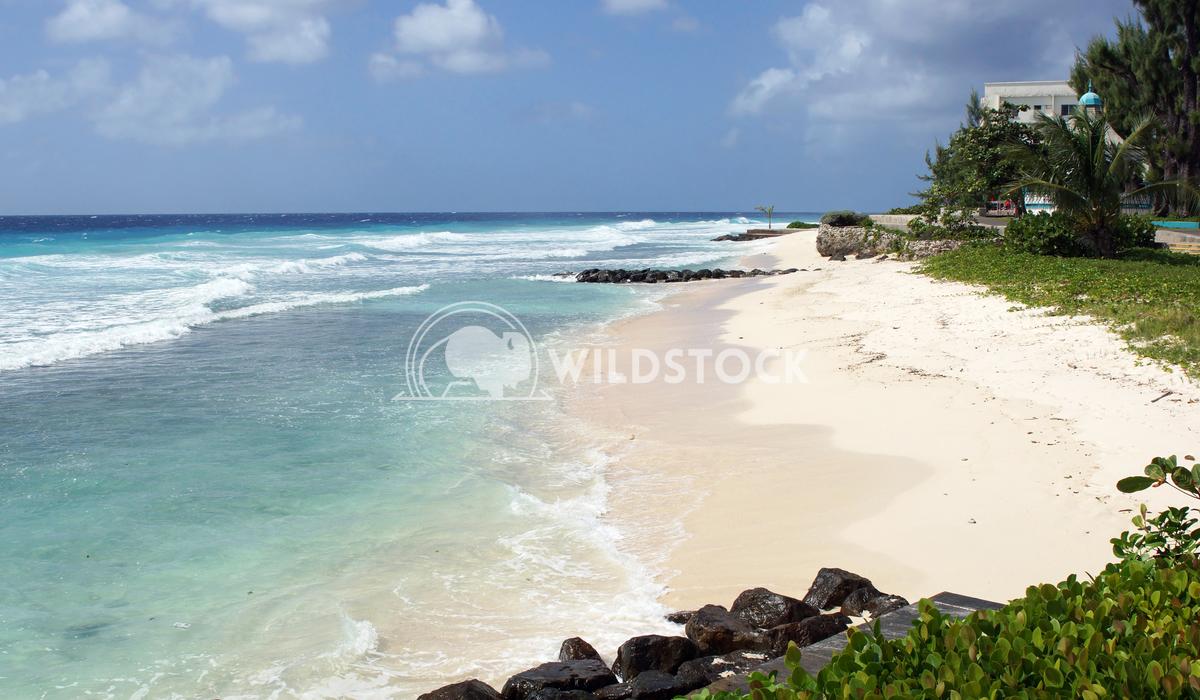 Barbados, Caribbean 2 Alexander Ludwig Tropical coast close to Bridgetown, Barbados, Caribbean