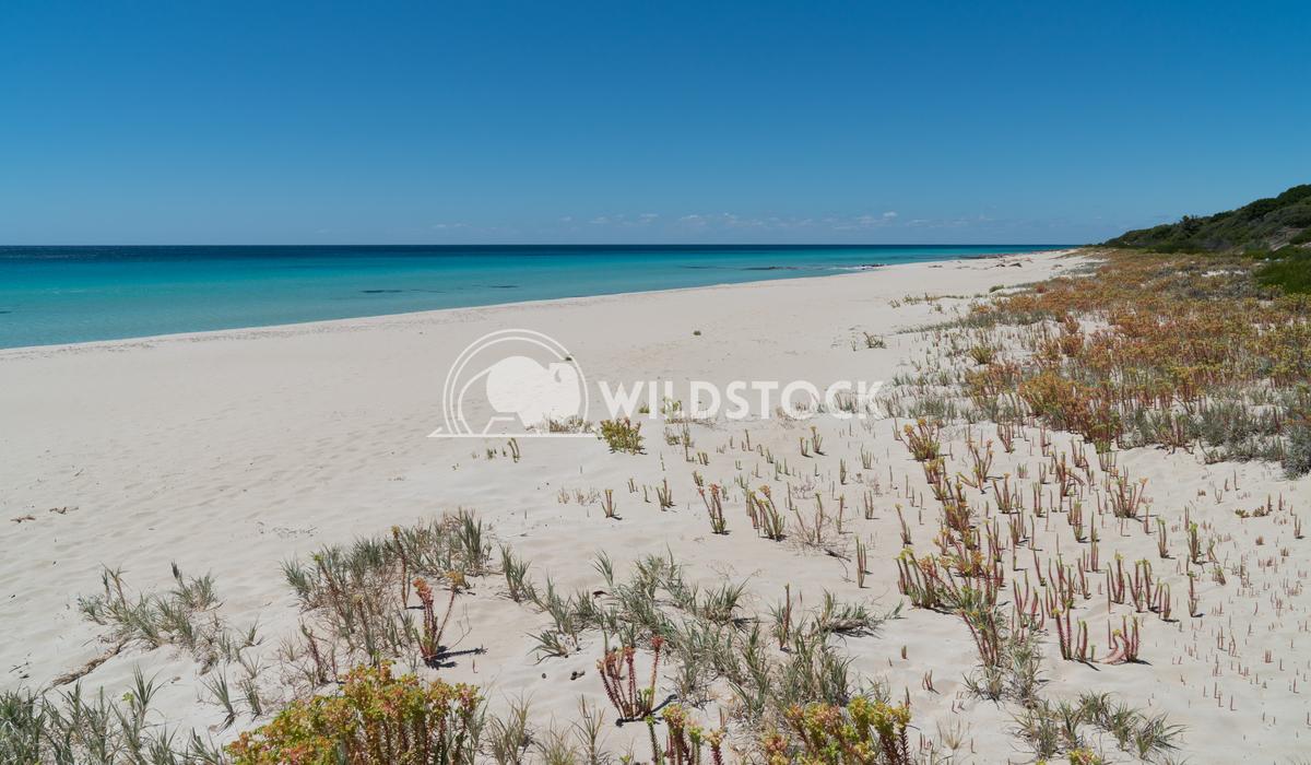 Leeuwin-Naturaliste National Park, Western Australia 12 Alexander Ludwig Beautiful coastal landscape of Cape Leeuwin, Le