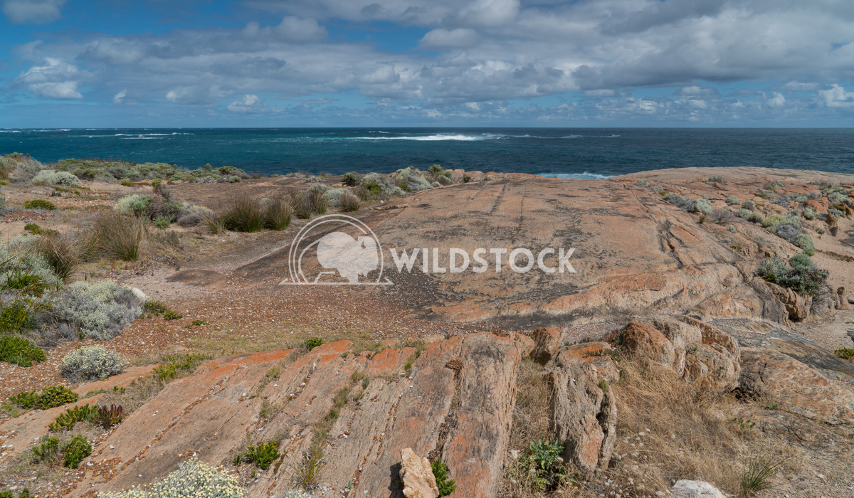 Leeuwin-Naturaliste National Park, Western Australia 4 Alexander Ludwig Beautiful coastal landscape of Cape Leeuwin, Lee