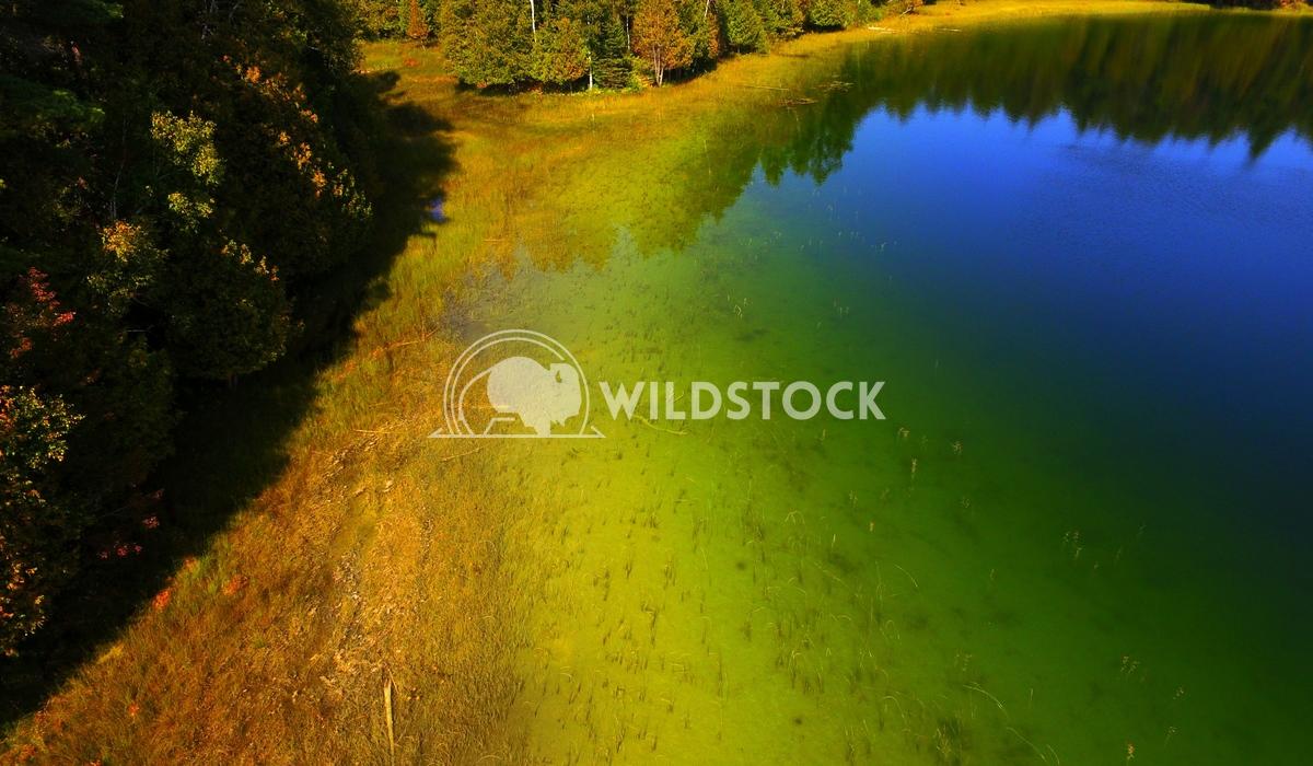Spruce Lake Doug Thain