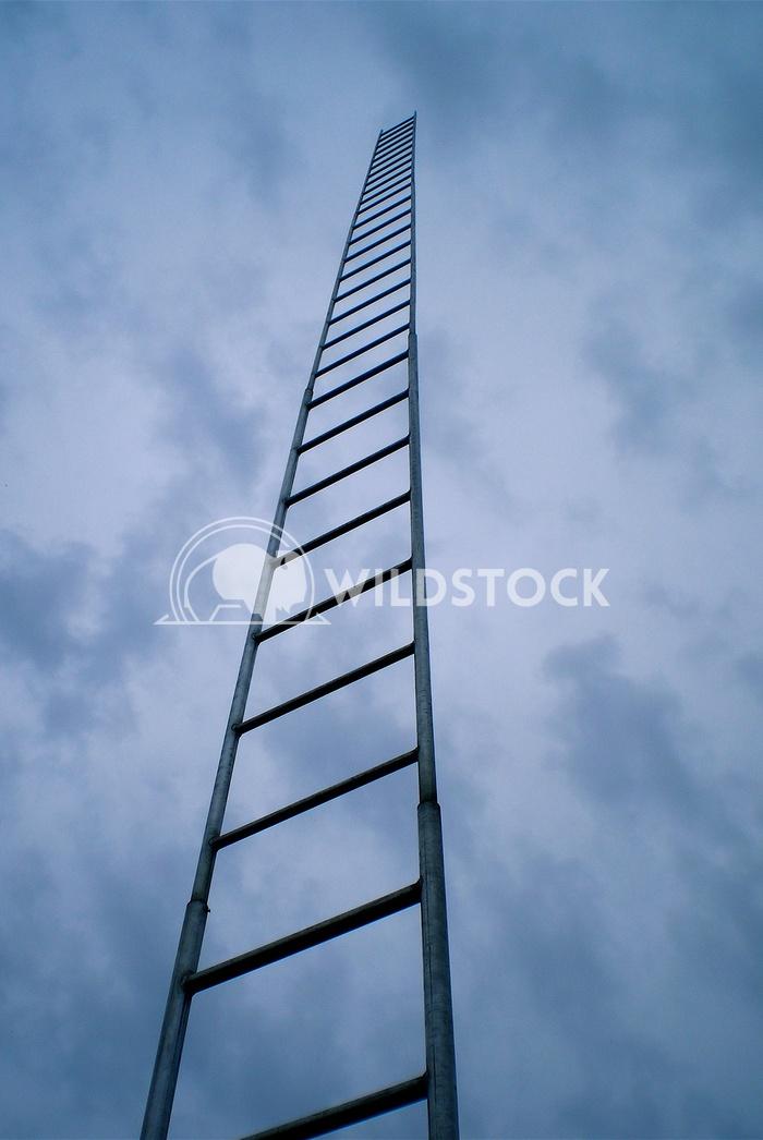sky ladder John Anglim