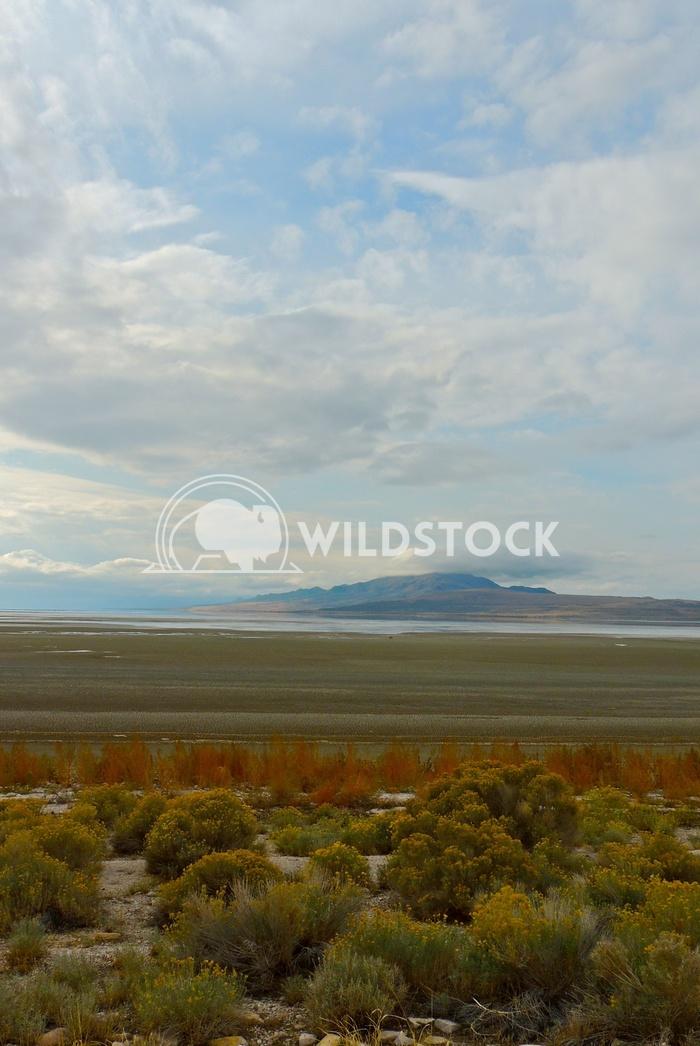 antelope island great salt lake 3 John Anglim