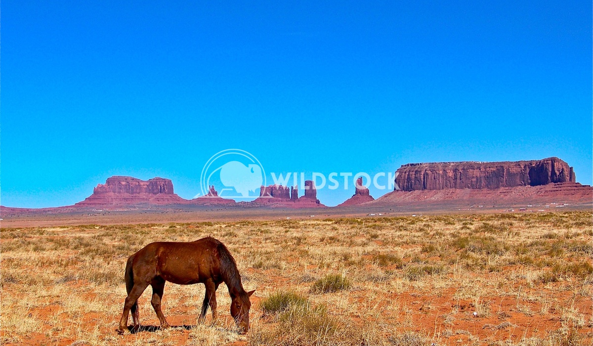 east of monument valley 3 John Anglim