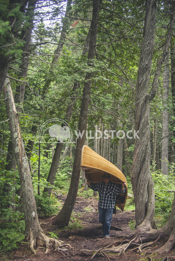 The Portage Jason Eke Man carries wooden canoe through forest.