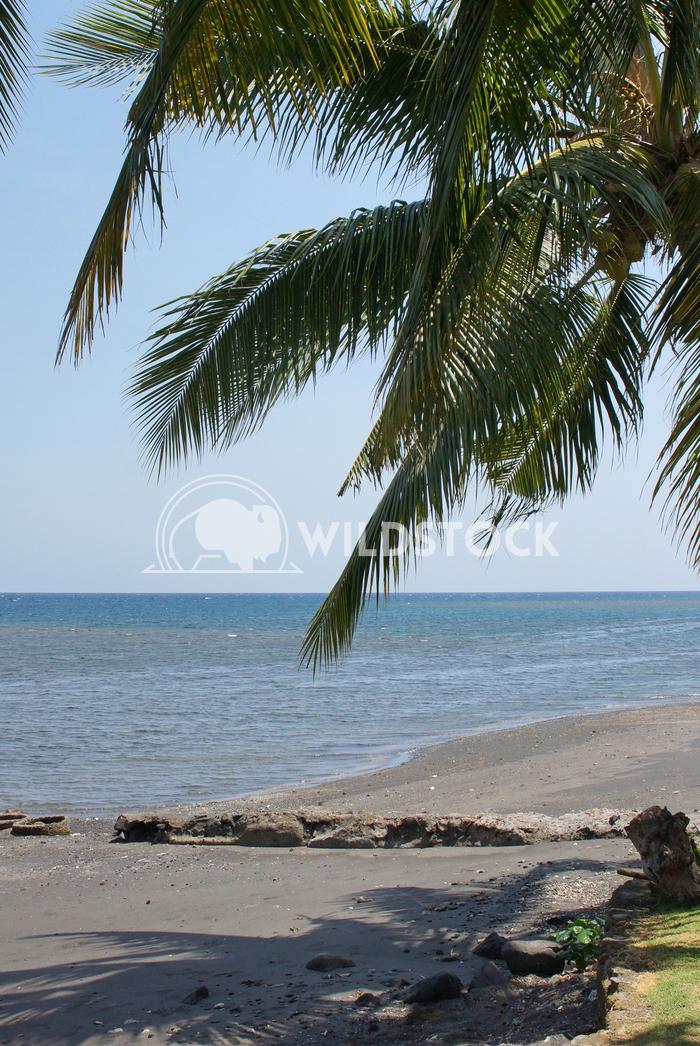 Lovina Beach, Bali, Indonesia, Asia 2 Alexander Ludwig Lovina Beach, Bali, Indonesia, Asia