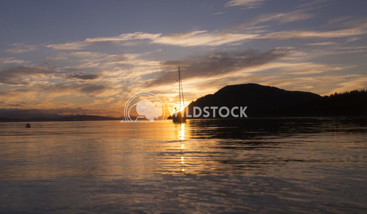 Christine De Bruyn Christine De Sailboat at sunset