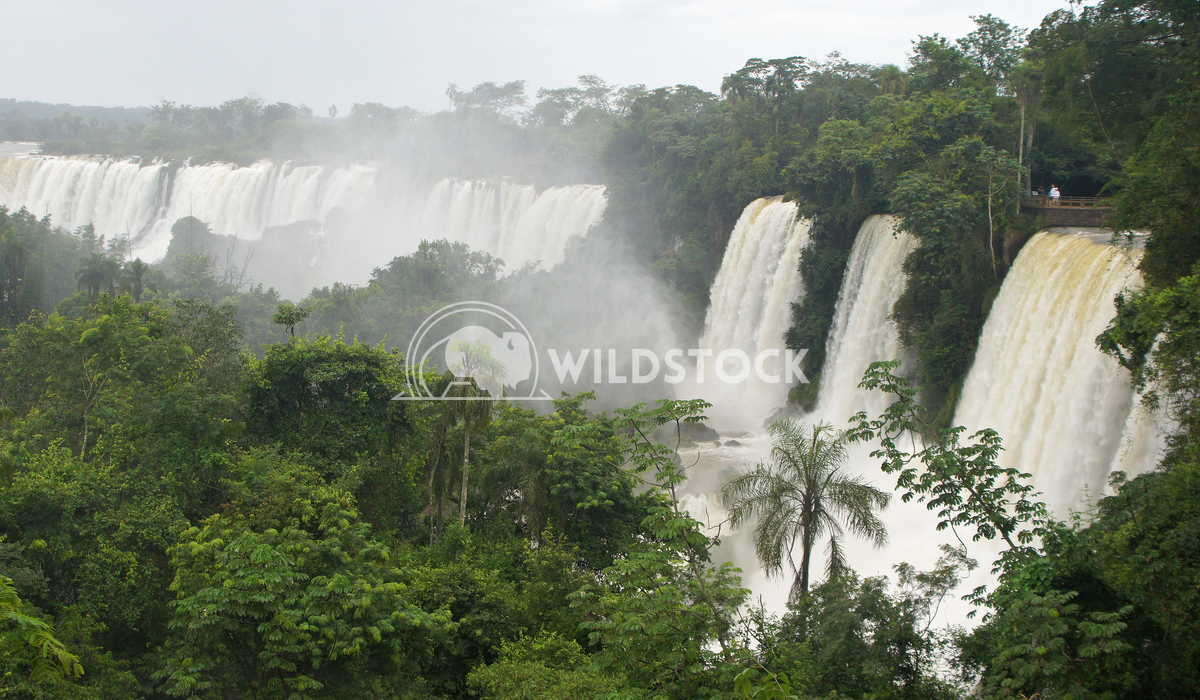 Waterfalls of Iguazu, Argentina 1 Alexander Ludwig Waterfalls of Iguazu, one of the biggest in the world, Argentina, Sou