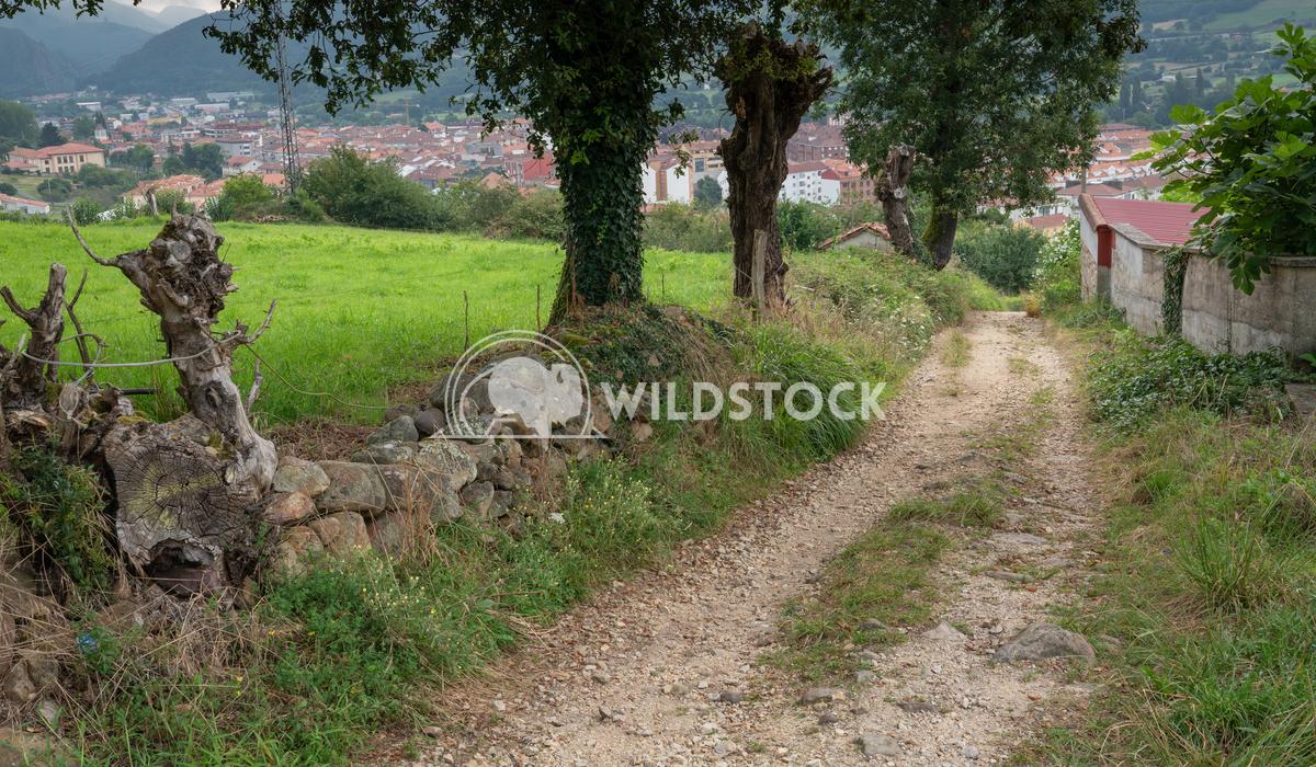 Camino Primitivo, Asturias, Spain 6 Alexander Ludwig Beautiful landscape along the Camino de Santiago, Asturias, Spain