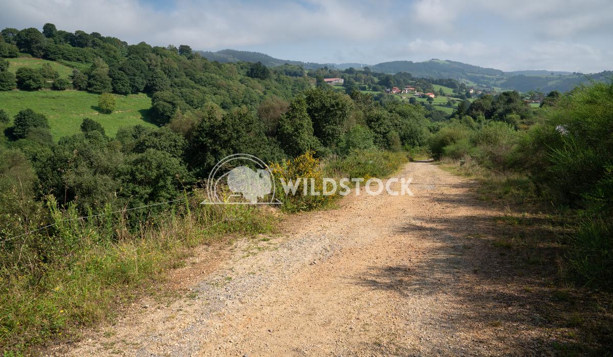 Camino Primitivo, Asturias, Spain 15 Alexander Ludwig Camino de Santiago trail between Salas and Tineo, Asturias, Spain