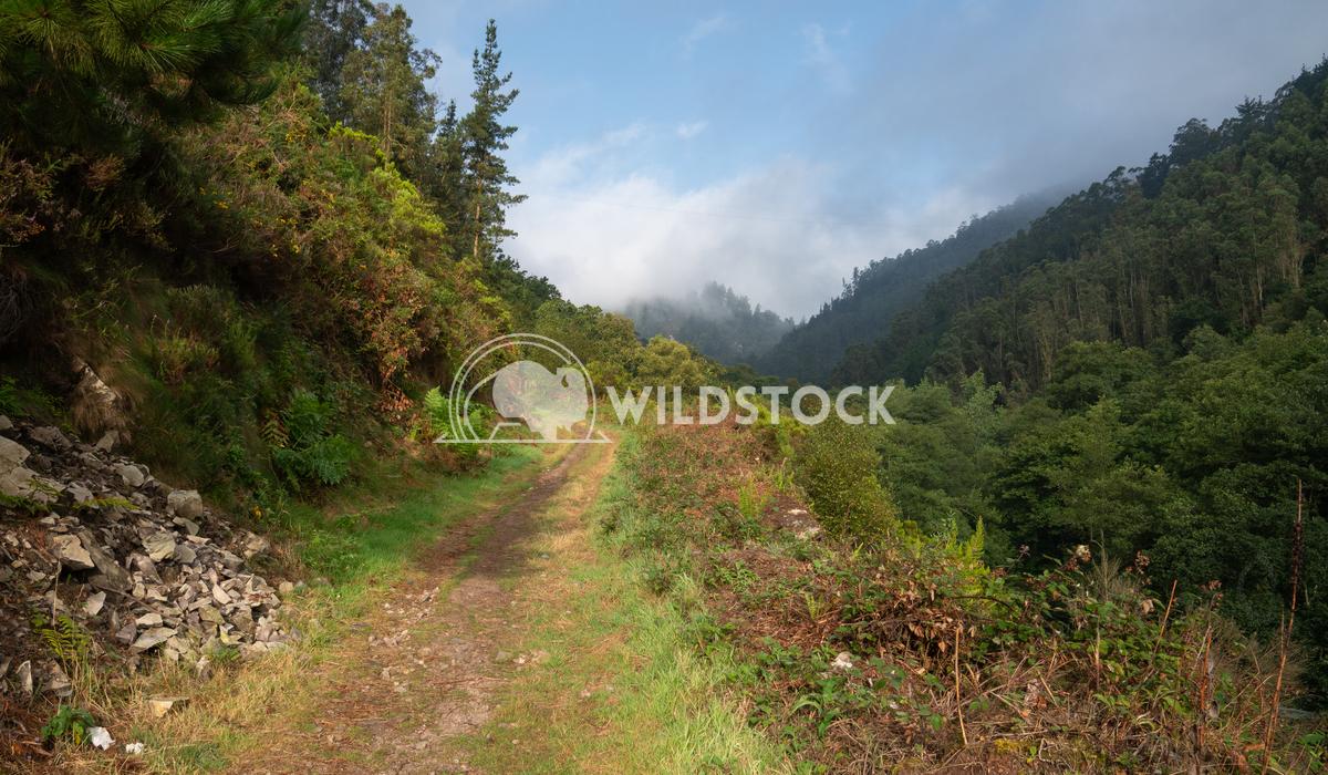 Camino Primitivo, Asturias, Spain 11 Alexander Ludwig Camino de Santiago trail between Salas and Tineo, Asturias, Spain