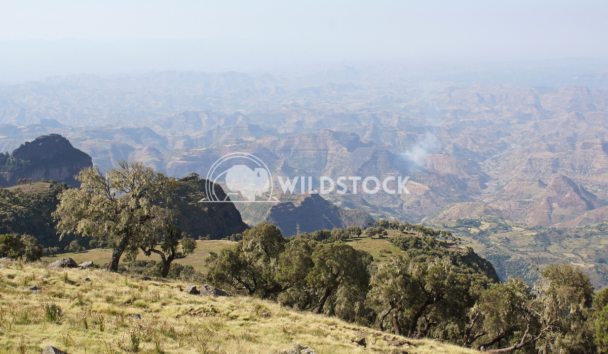 Semien Mountains National Park, Ethiopia, Africa 2 Alexander Ludwig Panorama of the landscape of Semien Mountains Nation