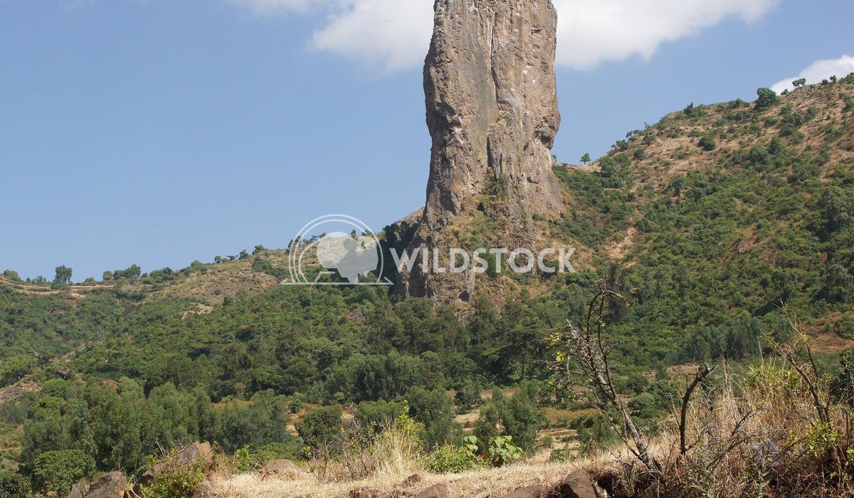 Vultures rock, Ethiopia, Africa 3 Alexander Ludwig Vultures rock close to Gondar, Ethiopia, Africa
