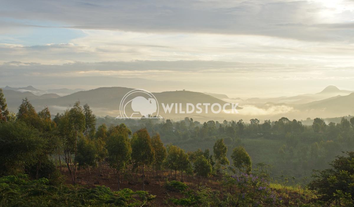Sunrise, Konso Mountains, Ethiopia, Africa 2 Alexander Ludwig Sunrise over Konso Mountains, Ethiopia, Africa