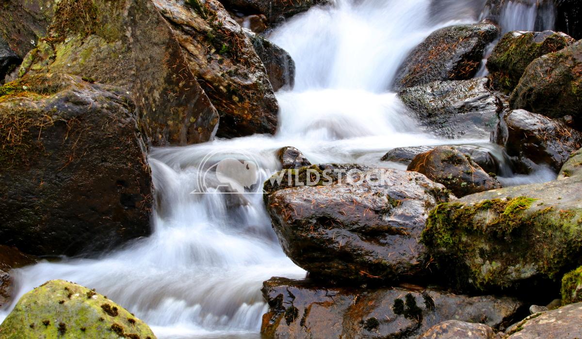 Small stream waterfall Scott Duffield