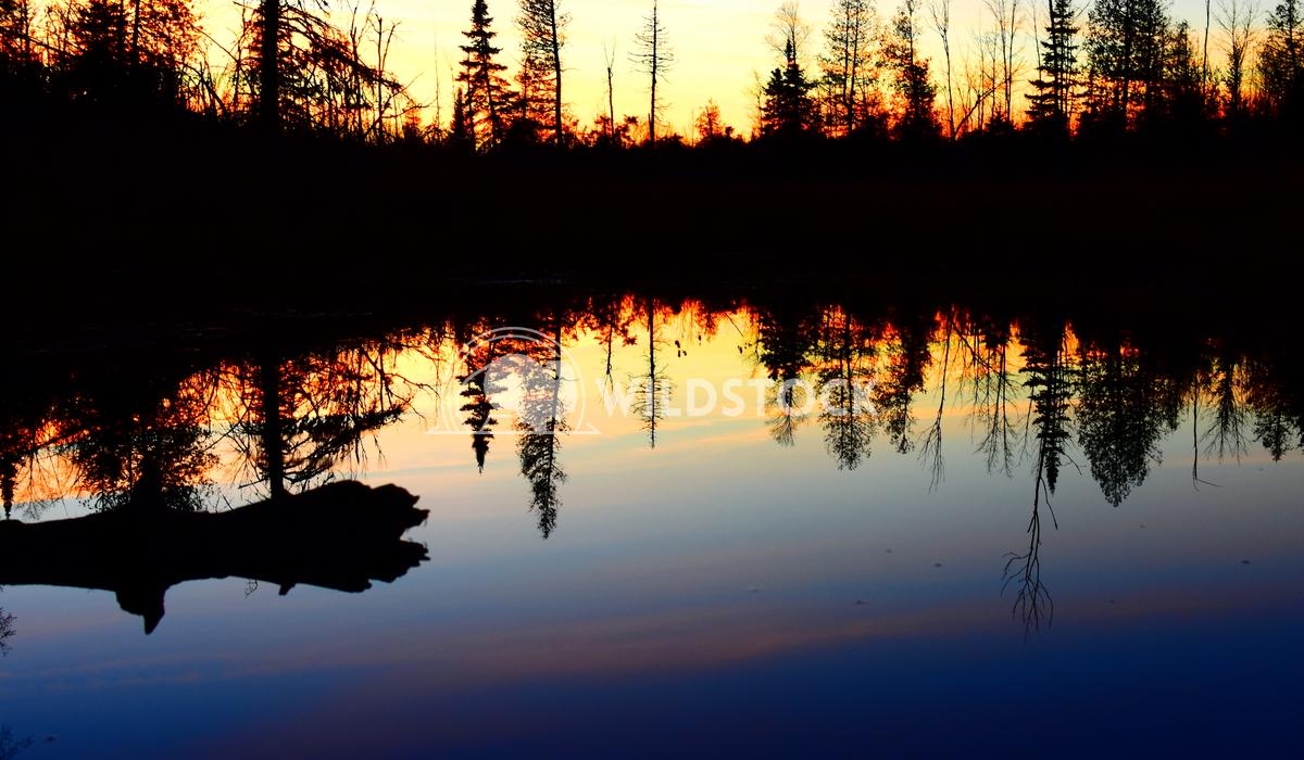 Evening Reflections Gordon Lindgren