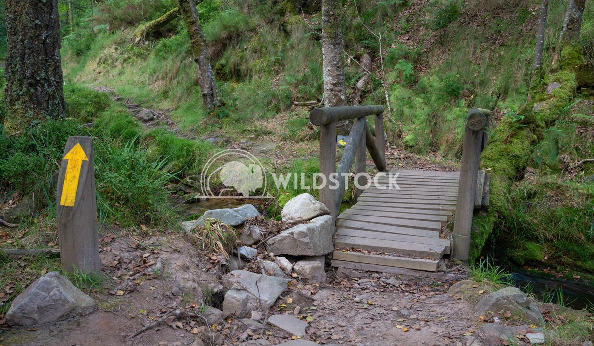 Camino Primitivo, Asturias, Spain 24 Alexander Ludwig Camino de Santiago trail, Asturias, Spain
