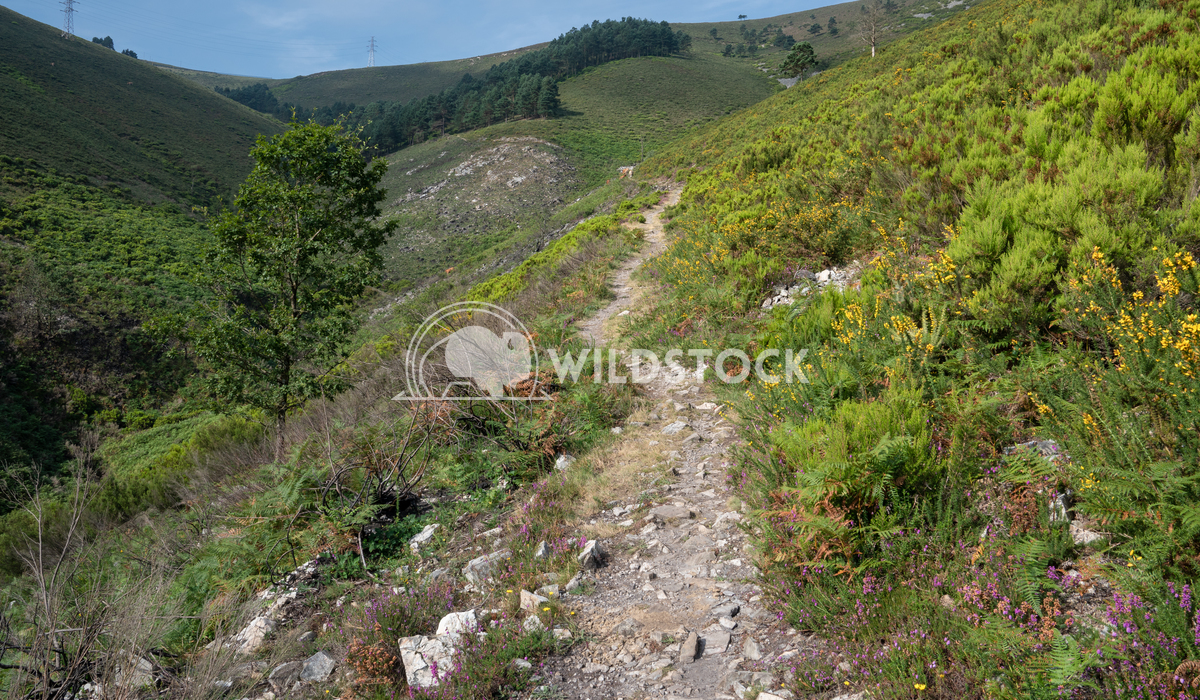 Camino Primitivo, Asturias, Spain 27 Alexander Ludwig Camino de Santiago trail, Asturias, Spain