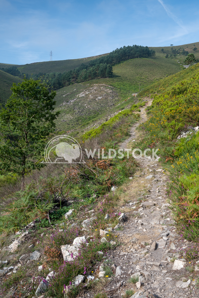 Camino Primitivo, Asturias, Spain 28 Alexander Ludwig Camino de Santiago trail, Asturias, Spain