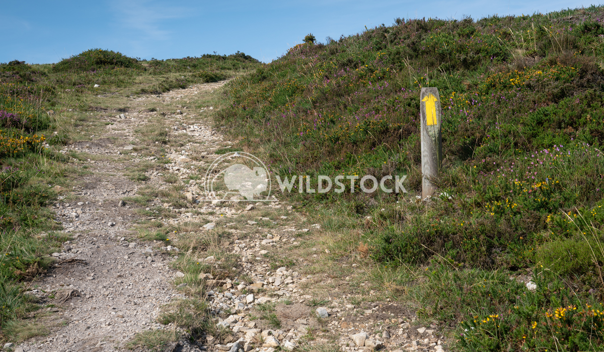 Camino Primitivo, Asturias, Spain 30 Alexander Ludwig Camino de Santiago trail, Asturias, Spain