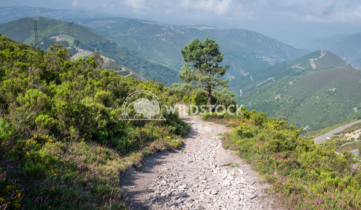 Camino Primitivo, Asturias, Spain 32 Alexander Ludwig Camino de Santiago trail, Asturias, Spain