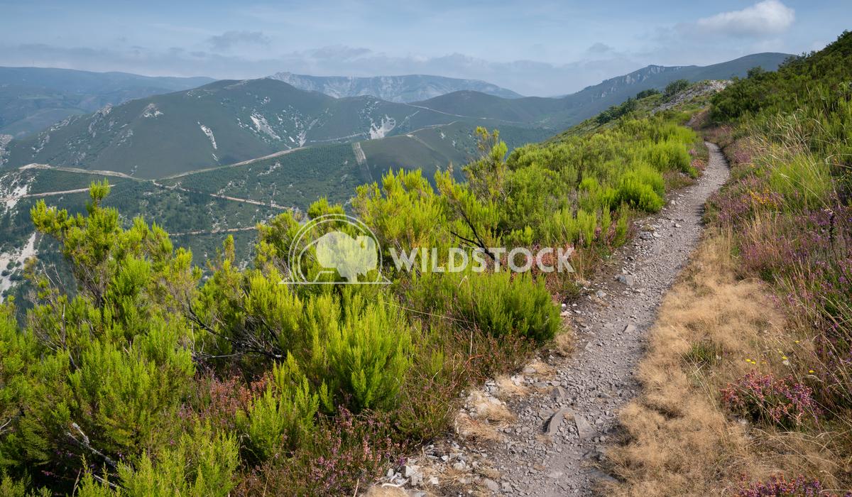 Camino Primitivo, Asturias, Spain 34 Alexander Ludwig Camino de Santiago trail, Asturias, Spain