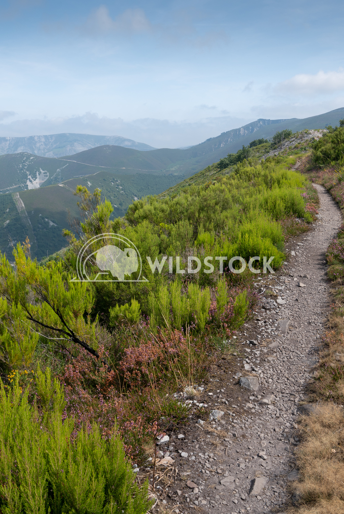 Camino Primitivo, Asturias, Spain 35 Alexander Ludwig Camino de Santiago trail, Asturias, Spain