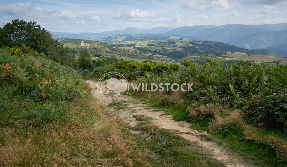 Camino Primitivo, Asturias, Spain 49 Alexander Ludwig Camino de Santiago trail, Asturias, Spain