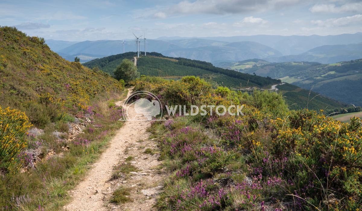 Camino Primitivo, Asturias, Spain 51 Alexander Ludwig Camino de Santiago trail, Asturias, Spain