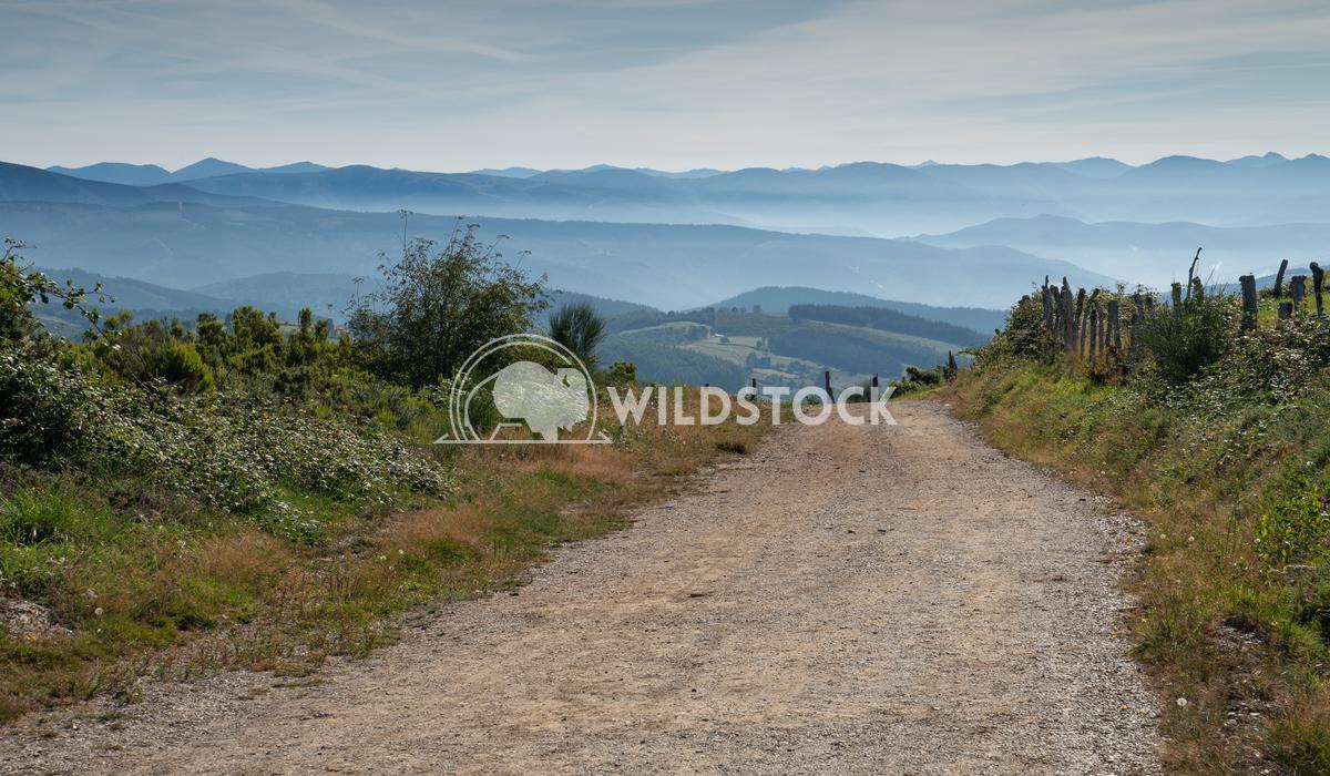 Camino Primitivo, Galicia, Spain 2 Alexander Ludwig Panoramic landscape along the Camino de Santiago trail, Spain