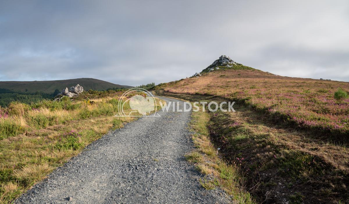 Camino Primitivo, Galicia, Spain 7 Alexander Ludwig Panoramic landscape along the Camino de Santiago trail, Spain