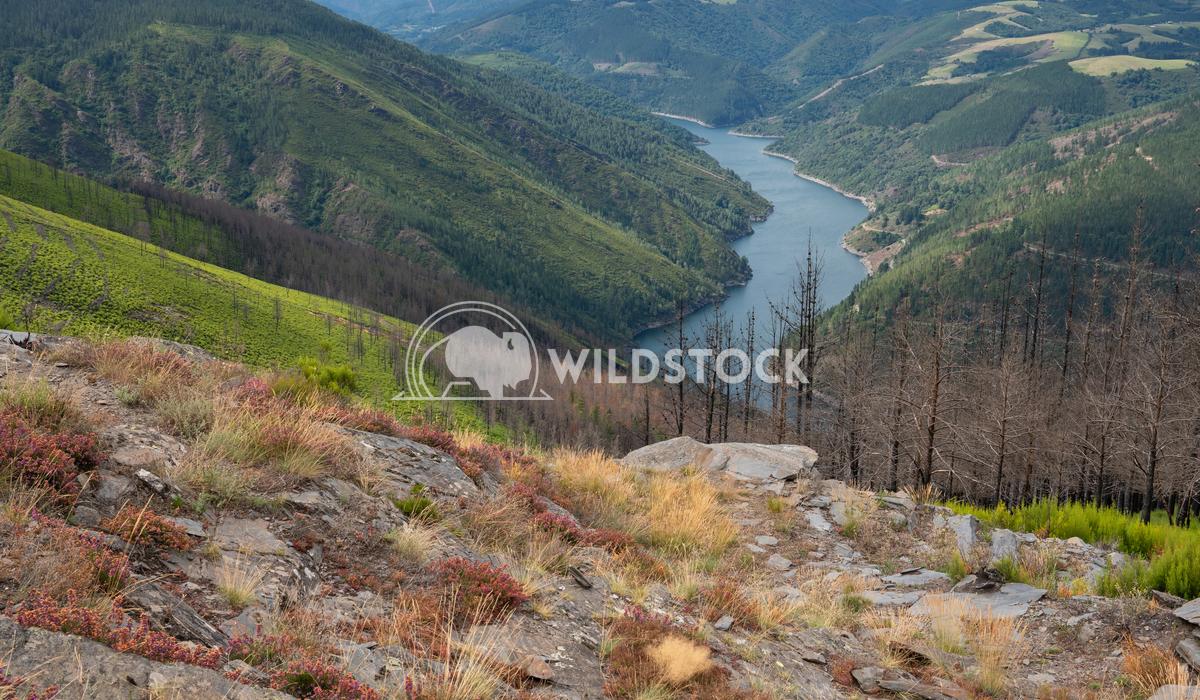 Grandas de Salime, beautiful landscape along the Camino de Santiago trail, Asturias, Spain Alexander Ludwig Water reserv