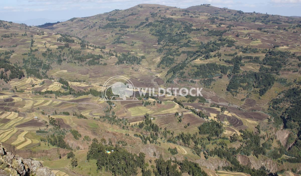 Landscape, Amhara, Ethiopia, Africa 1 Alexander Ludwig Landscape in Amhara province close to Lalibela, Ethiopia, Africa