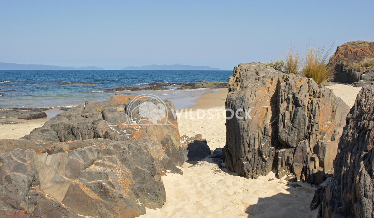Spiky Beach, Tasmania, Australia 4 Alexander Ludwig Lovely Spiky Beach, close to Swansea, Tasmania, Australia