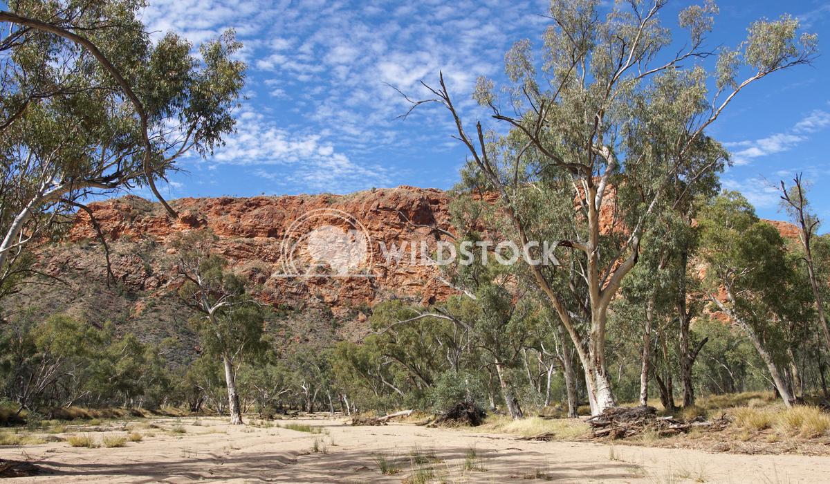 East MacDonnell Ranges, Australia 9 Alexander Ludwig East MacDonnell Ranges, Northern Territory, Australia