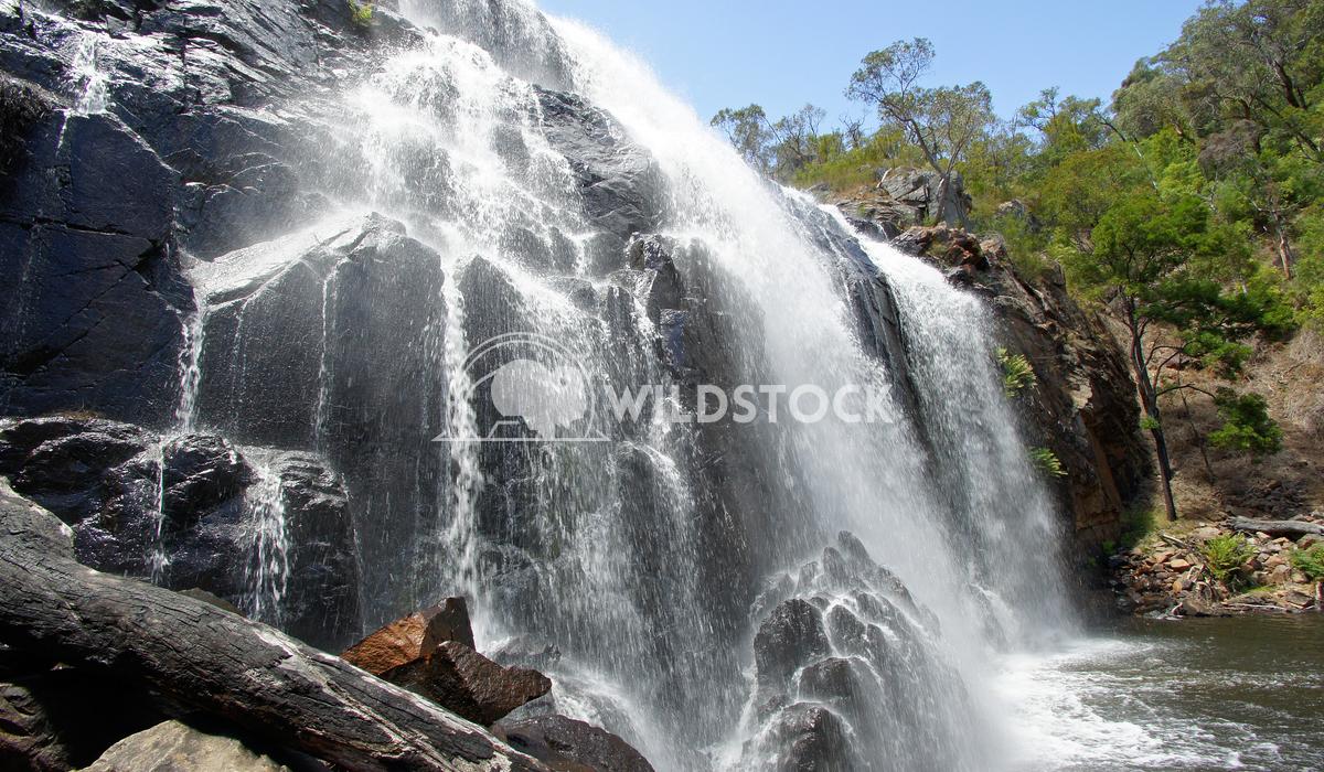 McKenzie Falls, Grampians National Park, Victoria, Australia 1 Alexander Ludwig McKenzie Falls, Grampians National Park,