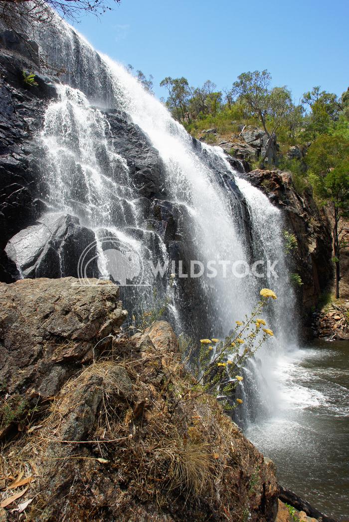 McKenzie Falls, Grampians National Park, Victoria, Australia 2 Alexander Ludwig McKenzie Falls, Grampians National Park,