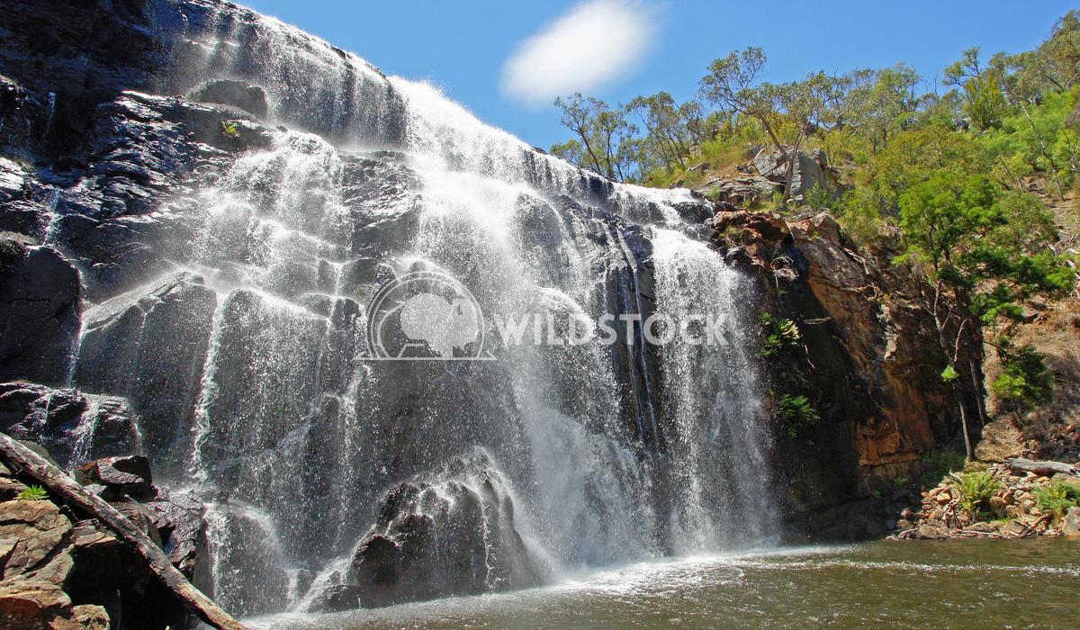 McKenzie Falls, Grampians National Park, Victoria, Australia 3 Alexander Ludwig McKenzie Falls, Grampians National Park,